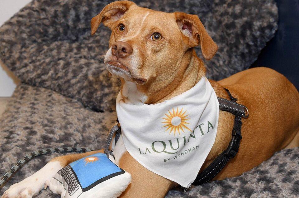 La Quinta by Wyndham Pet Policy