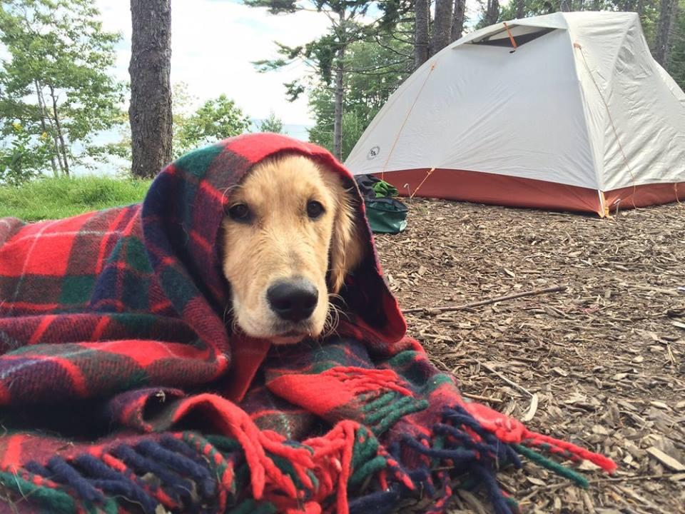 Campgrounds U.S.