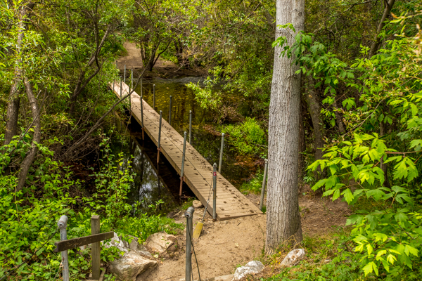 Carmel Valley: Garland Ranch Regional Park — Pet Friendly ...