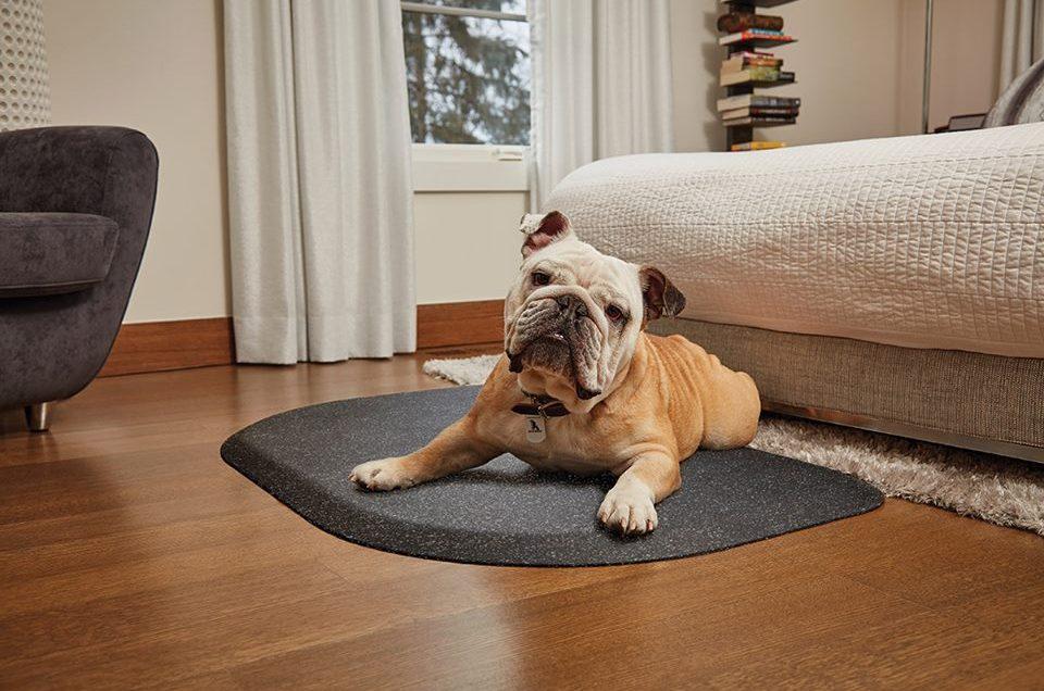 Wellness PetMats - Travel & Physical Therapy Mat