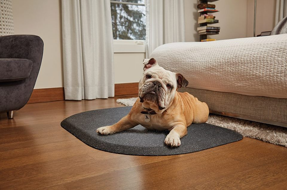 Wellness PetMats - Travel & Physical Therapy Mat