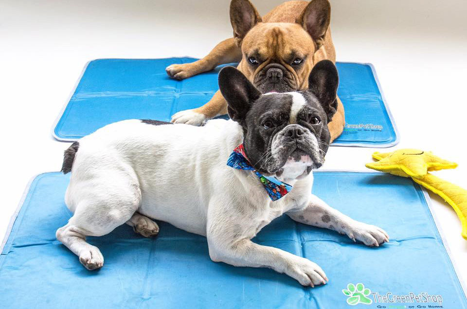 The Green Pet Shop - Cooling Pet Pad