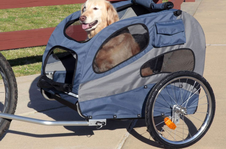 PetSafe - Pet Travel, Access & Mobility Products