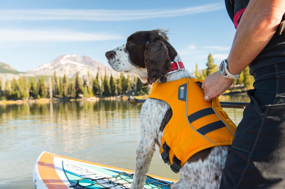 Ruffwear - Dog Gear for Outdoor Adventures